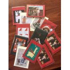 Alpaca Christmas Cards - Set of 6